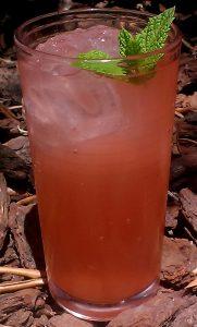 Rhubarb and raspberry cordial